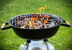 Оборудование для кулинарного производства.жаровни.барбекю барбекю своими руками очаги
